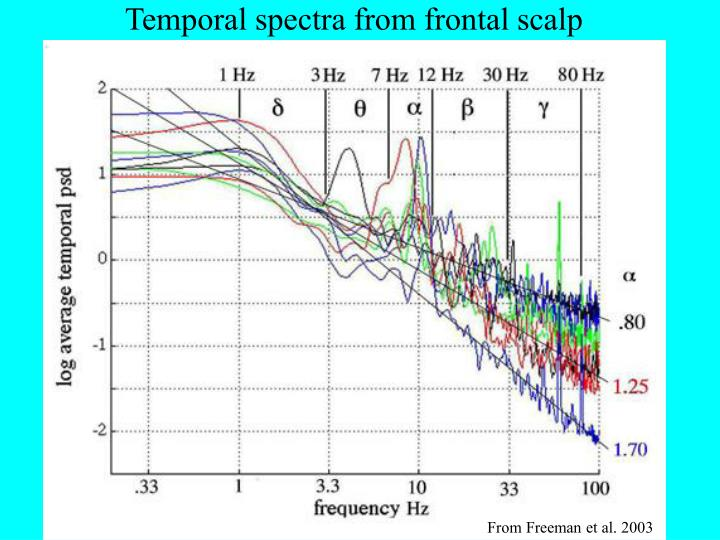 Temporal spectra from frontal scalp