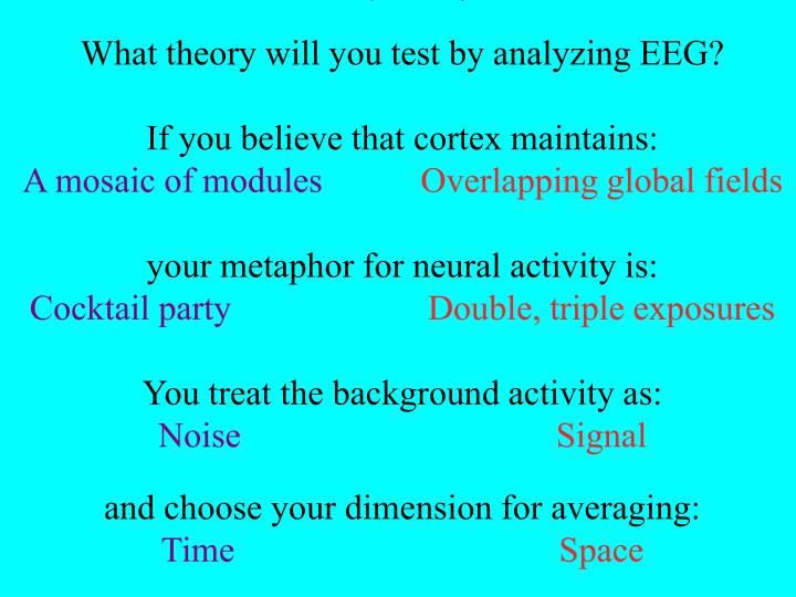 What theory will you test?