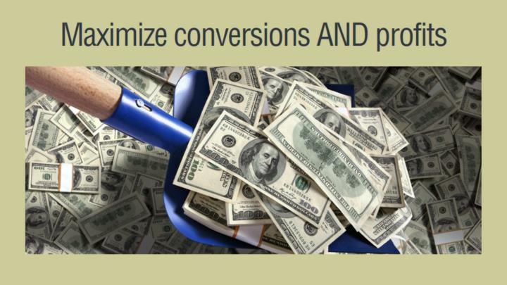 Maximize conversions AND profits