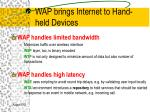 wap brings internet to hand held devices
