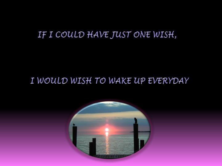 If I could have just one wish