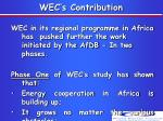 wec s contribution