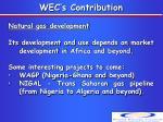 wec s contribution6