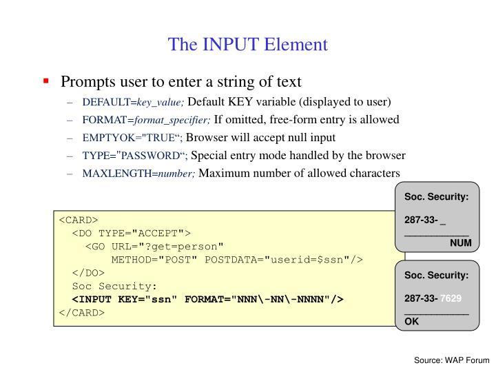 The INPUT Element