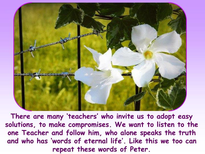 There are many 'teachers' who invite us to adopt easy solutions, to make compromises. We want to listen to the one Teacher and follow him, who alone speaks the truth and who has 'words of eternal life'. Like this we too can repeat these words of Peter.
