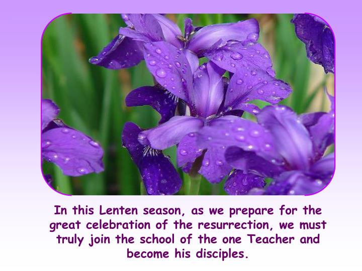 In this Lenten season, as we prepare for the great celebration of the resurrection, we must truly join the school of the one Teacher and become his disciples.