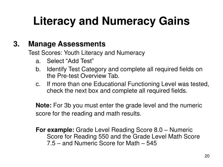 Literacy and Numeracy Gains