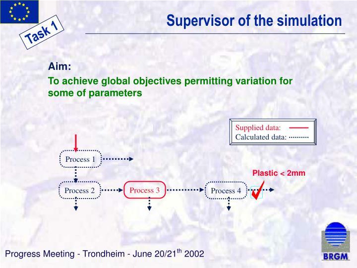 Supervisor of the simulation