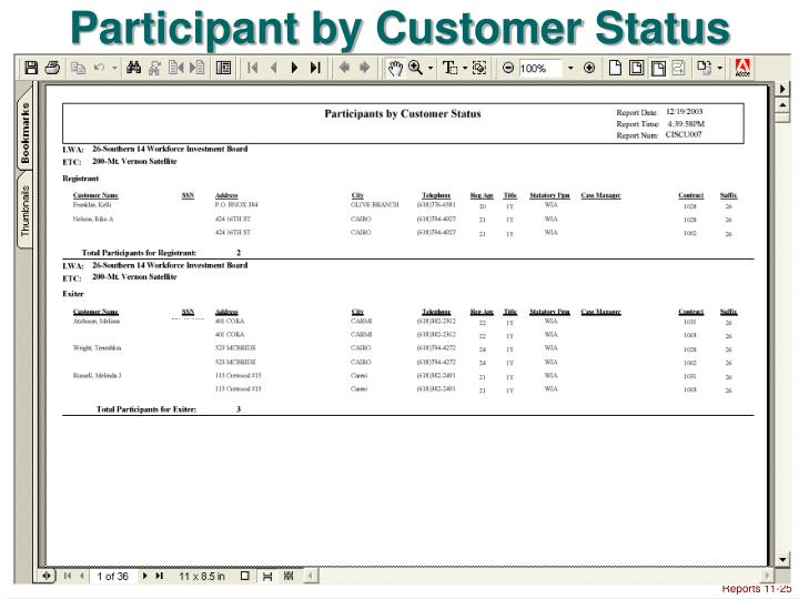 Participant by Customer Status
