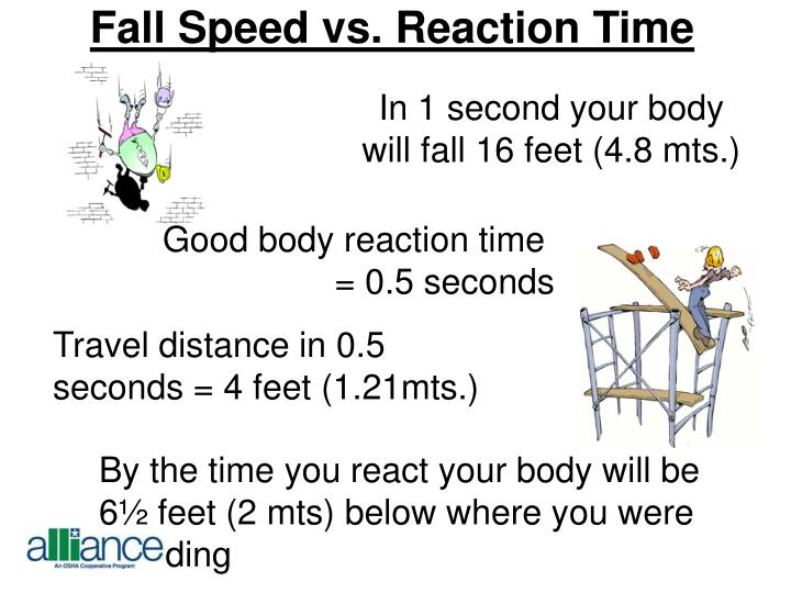 Fall Speed vs. Reaction Time