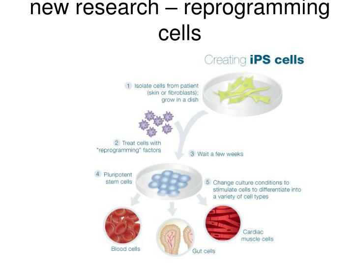 new research – reprogramming cells