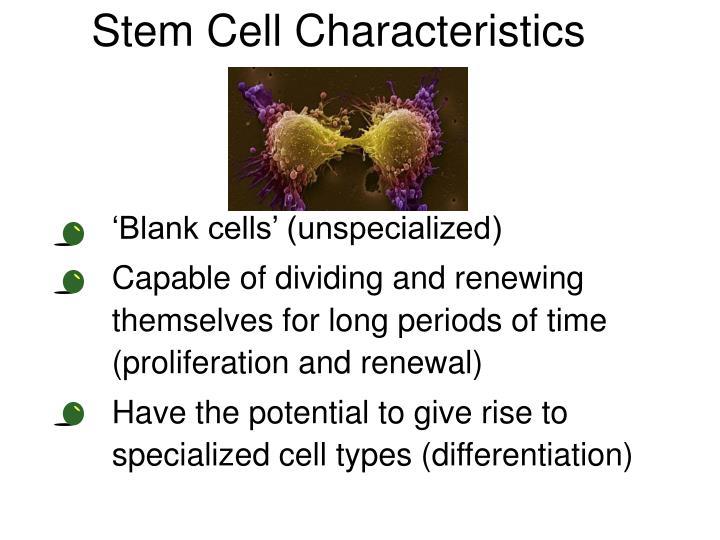 Stem Cell Characteristics