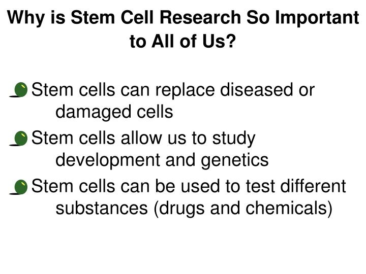 Why is Stem Cell Research So Important to All of Us?