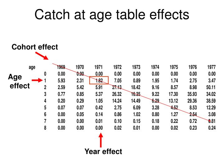 Catch at age table effects