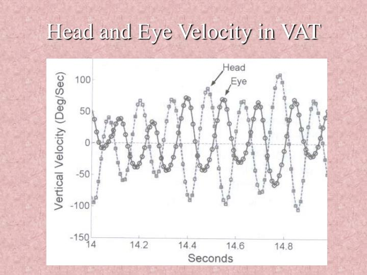 Head and Eye Velocity in VAT