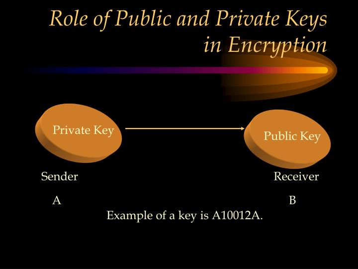 Role of Public and Private Keys in Encryption