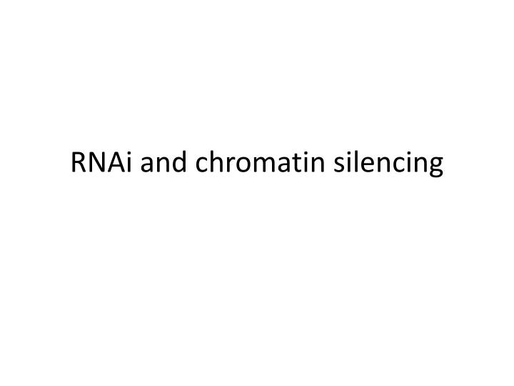 Rnai and chromatin silencing