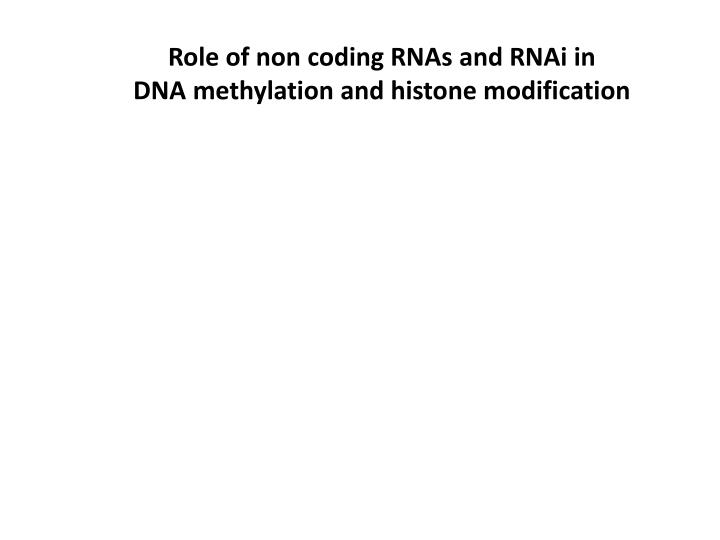 Role of non coding RNAs and RNAi in