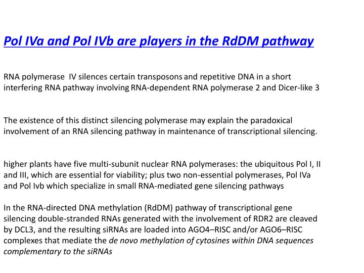 Pol IVa and Pol IVb are players in the RdDM pathway
