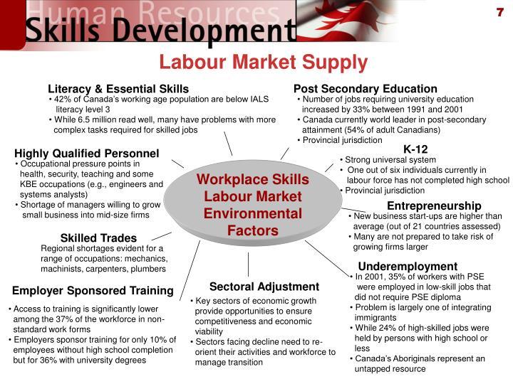 Labour Market Supply