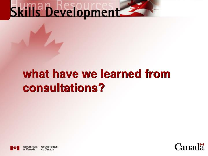 what have we learned from consultations?
