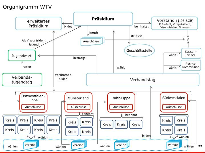 Organigramm WTV