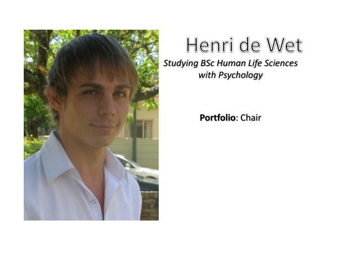Henri de Wet