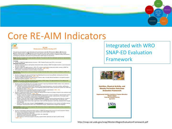 Core RE-AIM Indicators