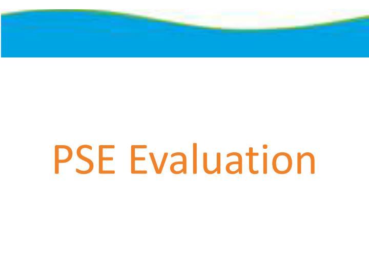 PSE Evaluation