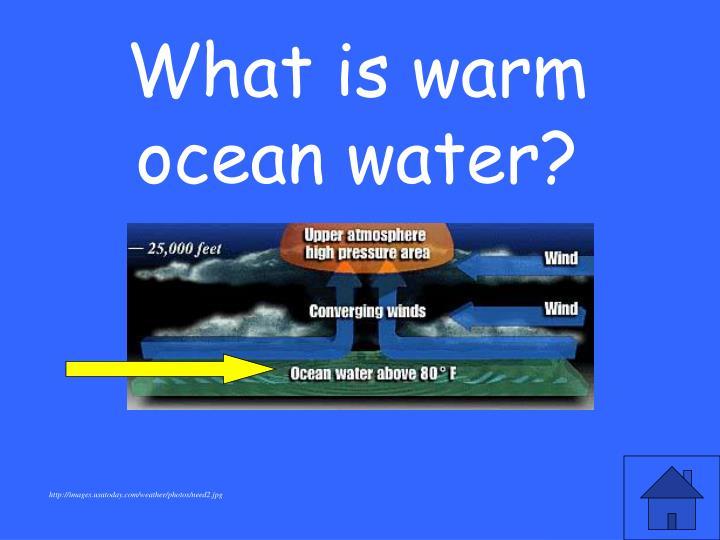 What is warm ocean water?