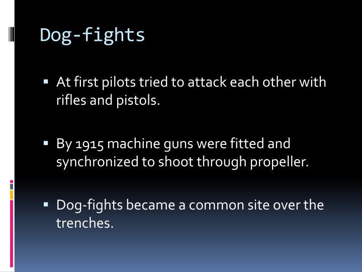 Dog-fights