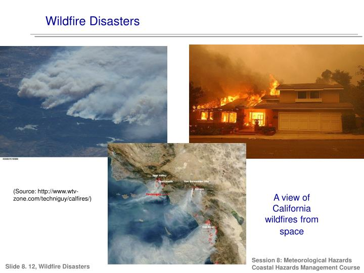 Wildfire Disasters
