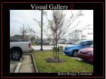 visual gallery 2