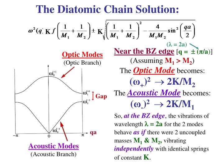 The Diatomic Chain Solution: