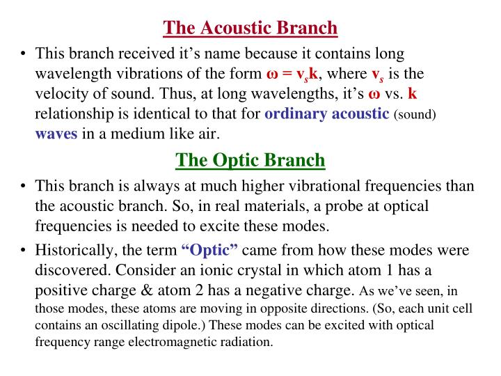 The Acoustic Branch