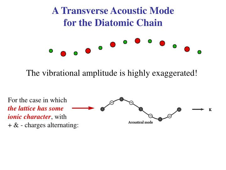 A Transverse Acoustic Mode                                for the Diatomic Chain