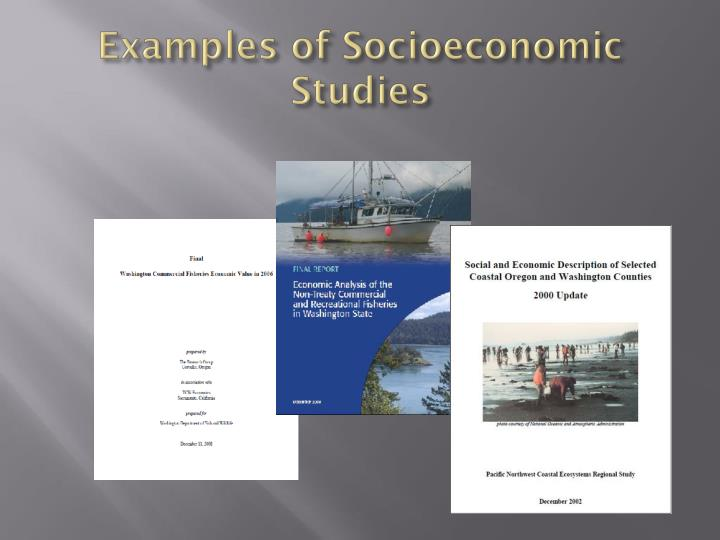 Examples of Socioeconomic Studies