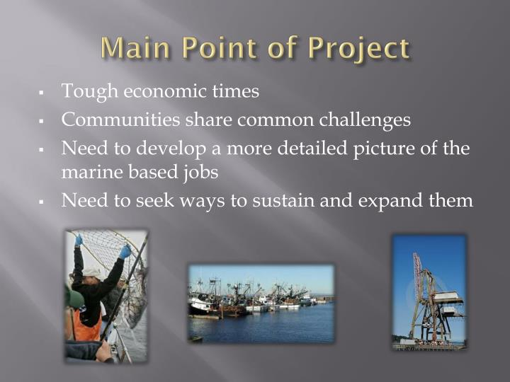 Main Point of Project