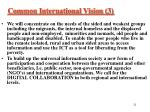 common international vision 3