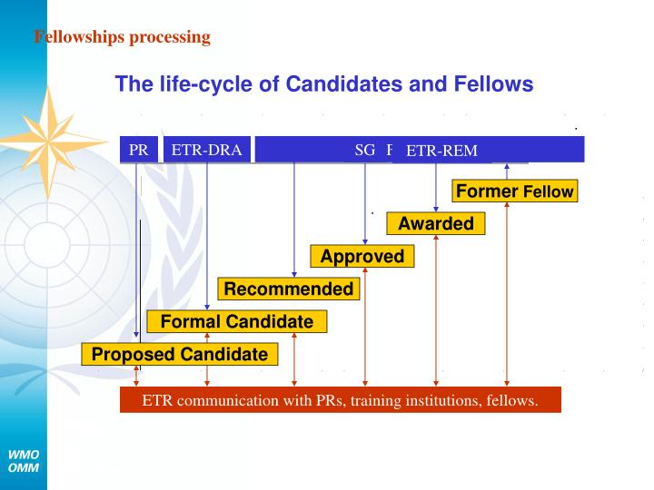 Fellowships processing