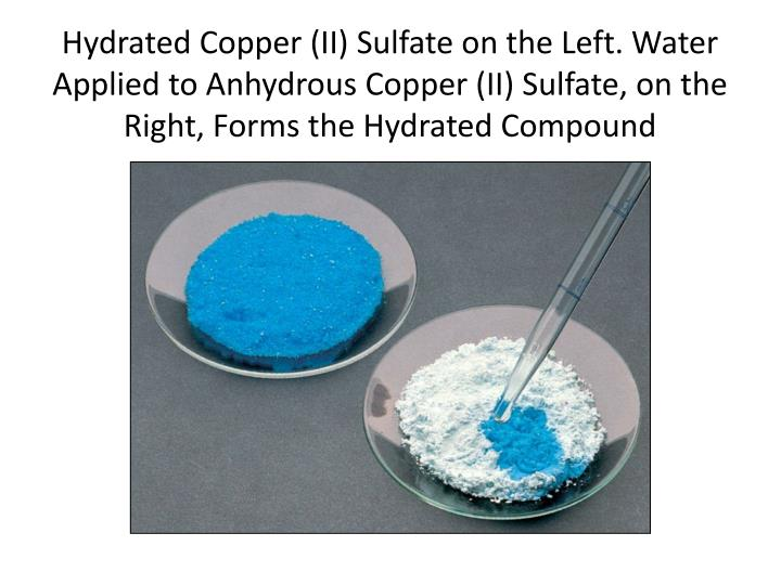 Hydrated Copper (II) Sulfate on the Left. Water Applied to Anhydrous Copper (II) Sulfate, on the Right, Forms the Hydrated Compound
