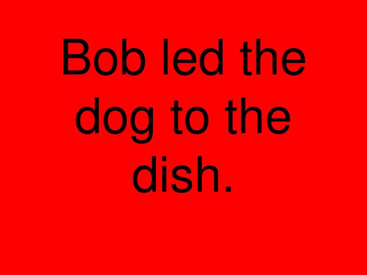 Bob led the dog to the dish.