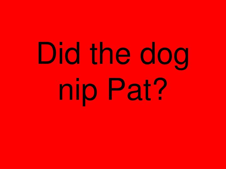 Did the dog nip Pat?