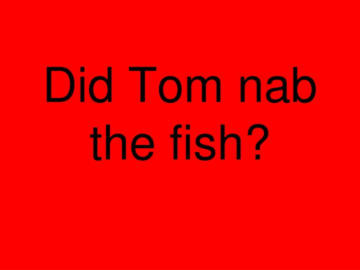 Did Tom nab the fish?