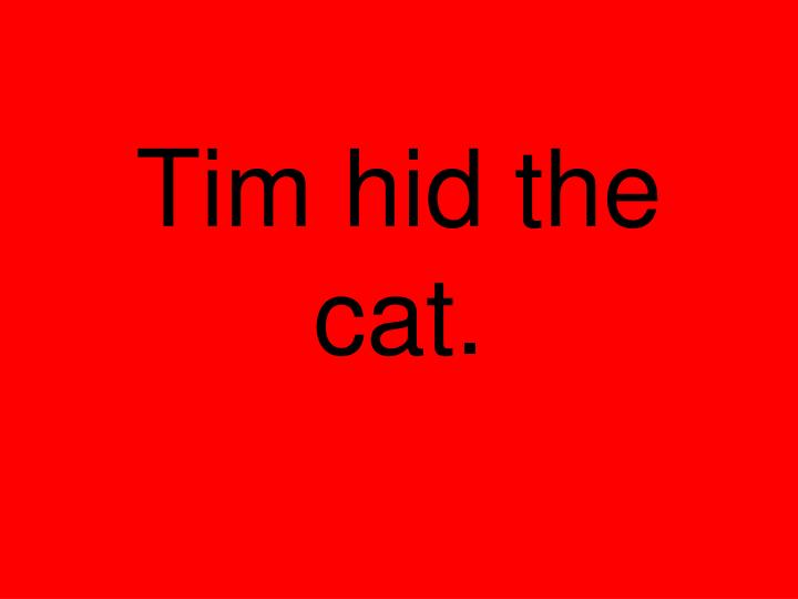 Tim hid the cat.