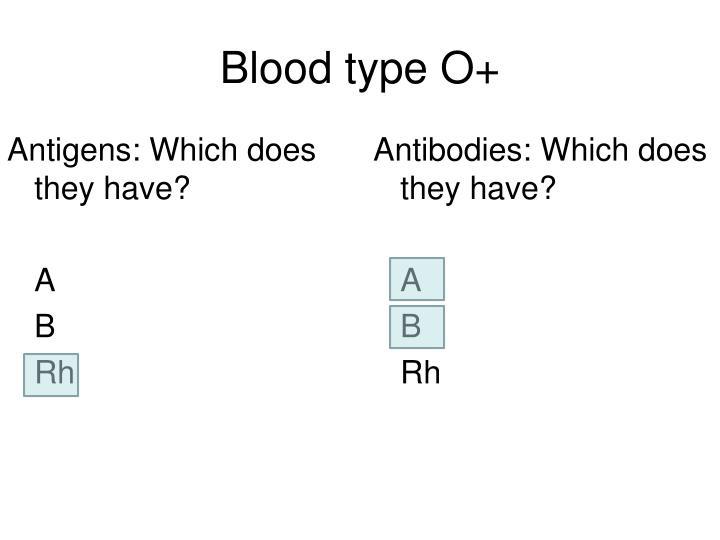 Blood type O+