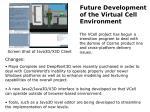 future development of the virtual cell environment