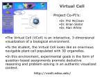 virtual cell