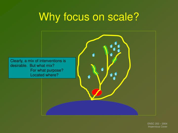 Why focus on scale?