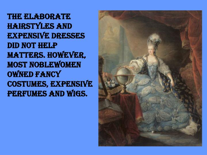 The elaborate hairstyles and expensive dresses did not help matters. However, most noblewomen owned fancy costumes, expensive perfumes and wigs.